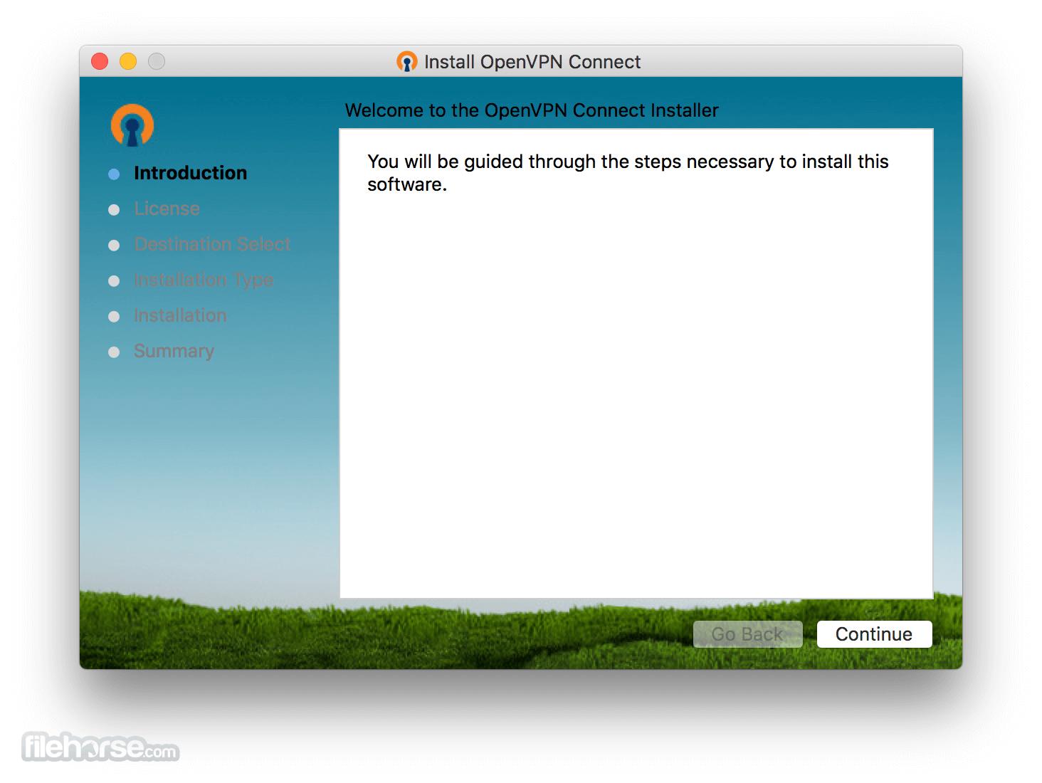 OpenVPN 2.4.9 Captura de Pantalla 1