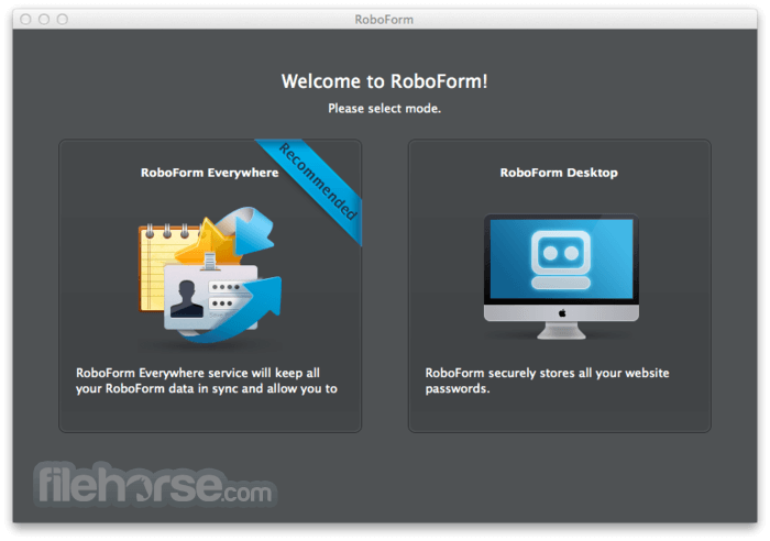 RoboForm 2.2.5 Screenshot 1