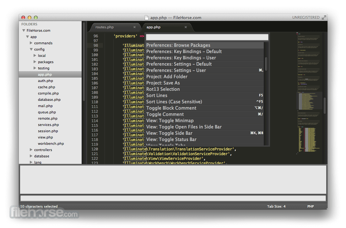 Sublime Text 3176 Screenshot 2
