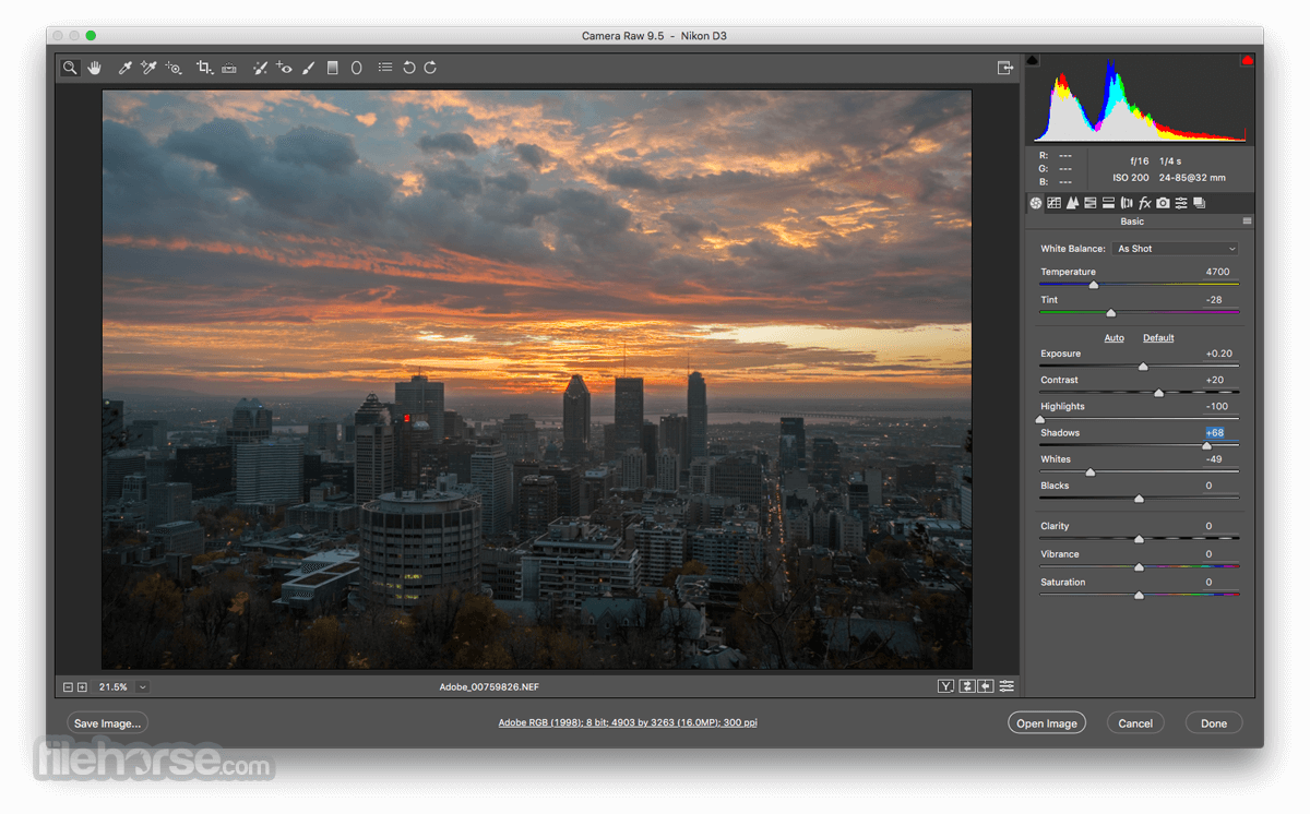 Adobe Camera Raw 9.6 Screenshot 1