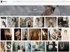 Adobe Stock Captura de Pantalla 1