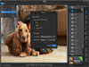 Fotor for Mac 3.5.1 Screenshot 1