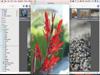 Lyn 1.13 Screenshot 3