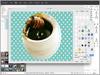 PhotoScape X 2.6.3 Screenshot 3
