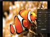 WidsMob Viewer 2.10 Captura de Pantalla 4
