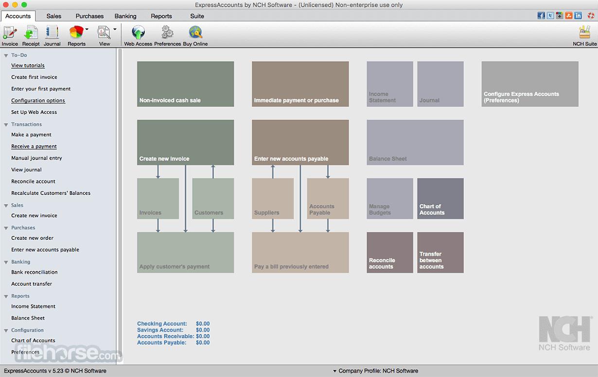 Express Accounts Accounting Software 8.11 Screenshot 1
