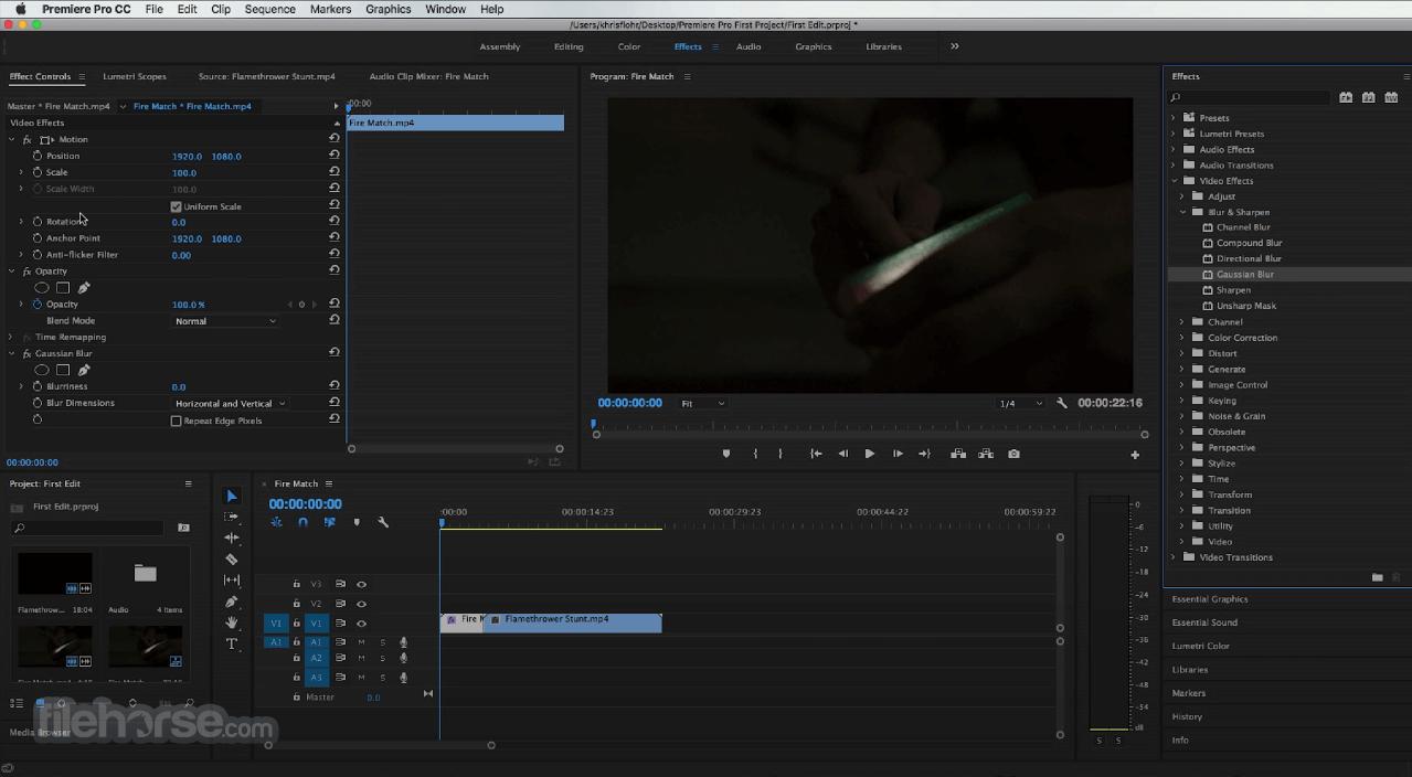 Adobe Premiere Pro CC 2020 14.6 Captura de Pantalla 3