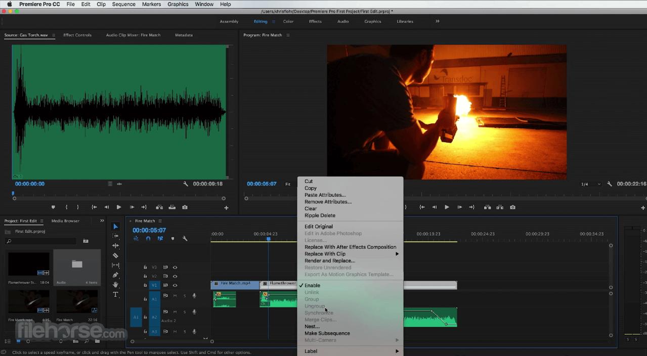 Adobe Premiere Pro CC 2020 14.6 Captura de Pantalla 4