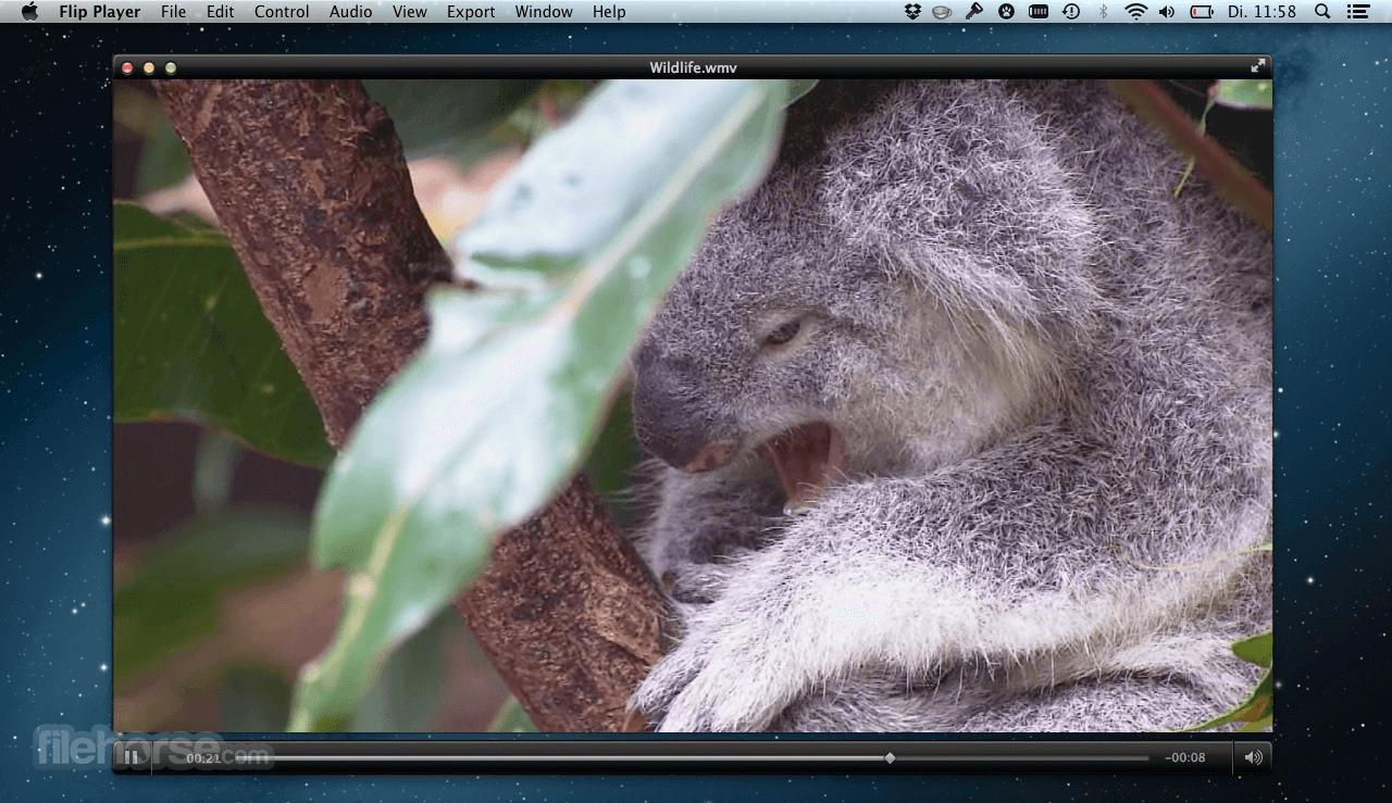 Flip4Mac Player 3.3.3.1 Screenshot 1