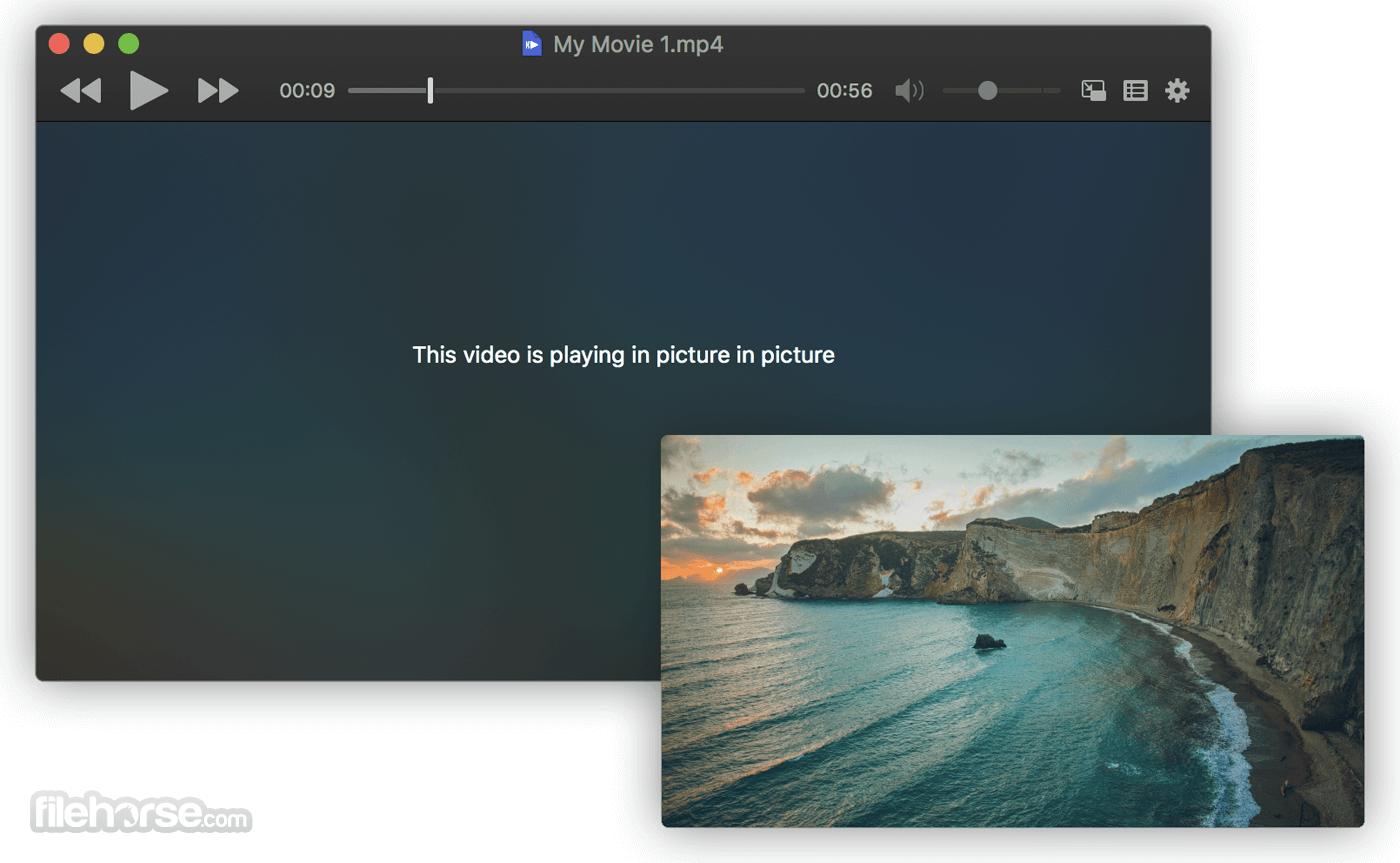 IINA 1.2.0 Screenshot 2