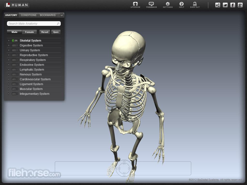 BioDigital Human Captura de Pantalla 1