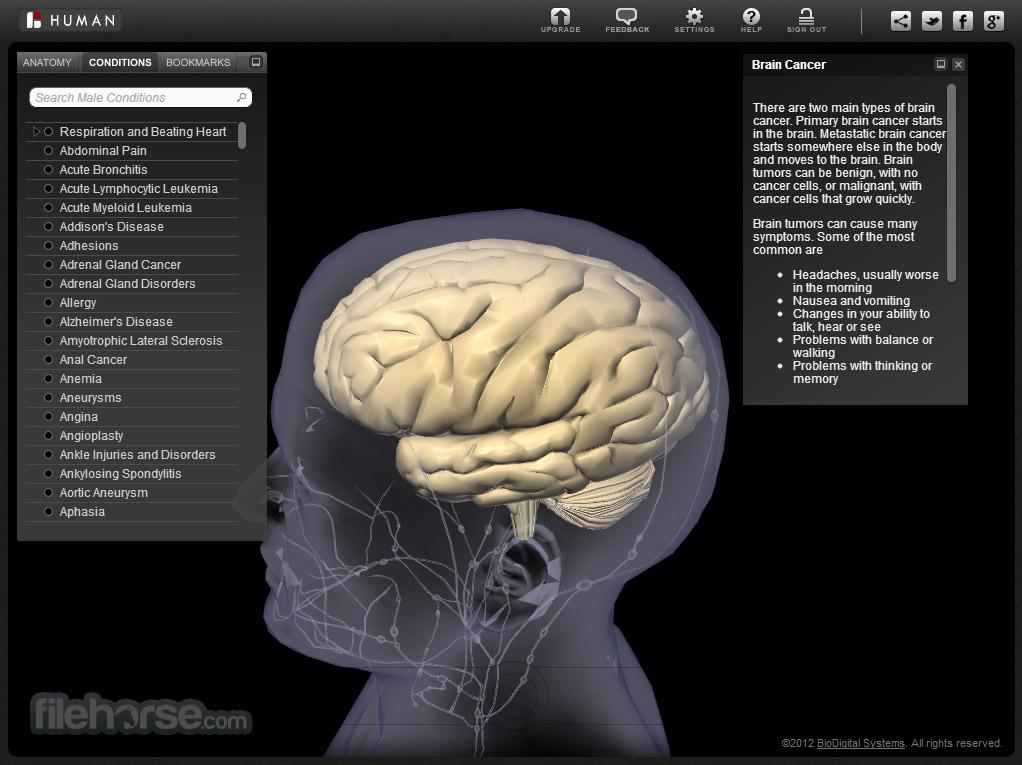BioDigital Human Screenshot 3