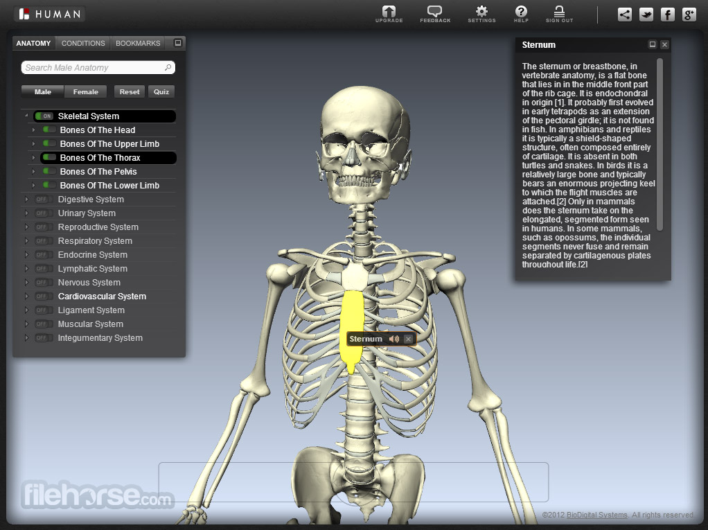 BioDigital Human Screenshot 4
