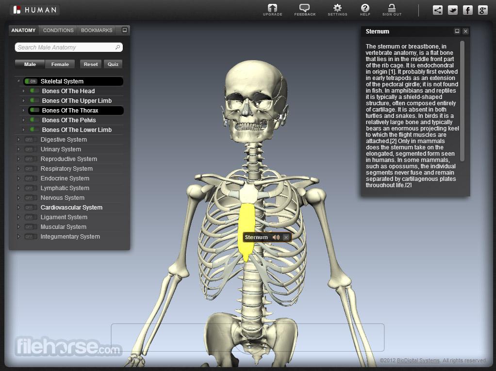 BioDigital Human Captura de Pantalla 4