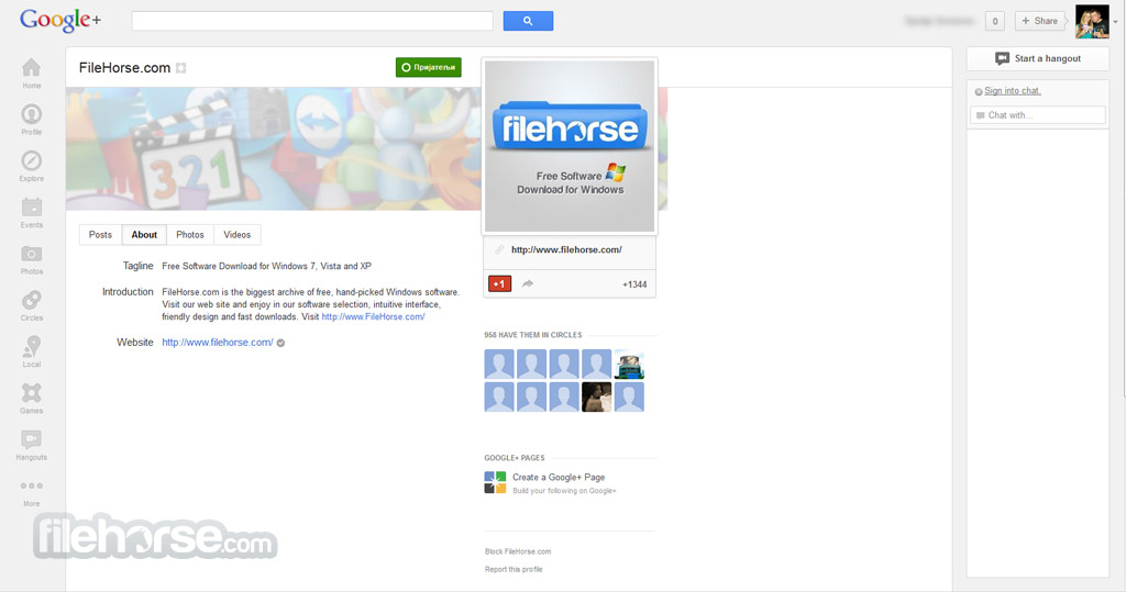 Google+ Screenshot 1