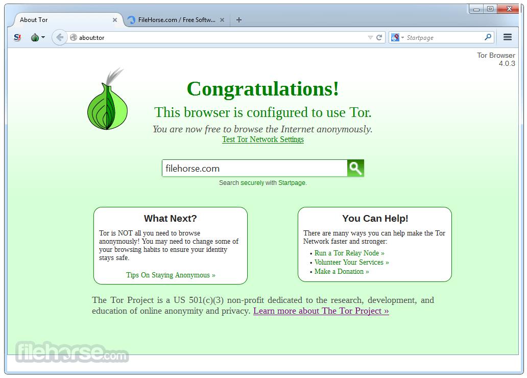 Tor Browser 8.0.6 Screenshot 1