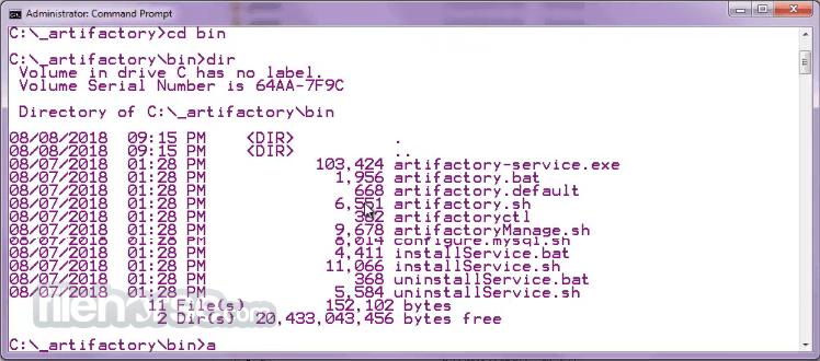 Artifactory 6.20.1 Screenshot 2