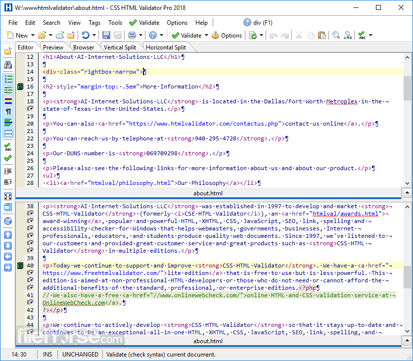 CSS HTML Validator 2020 20.0300 Captura de Pantalla 2