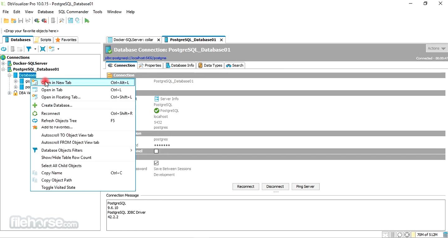 DbVisualizer 12.0.5 (32-bit) Captura de Pantalla 4