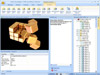 Flash Decompiler Trillix 5.3.1400 Captura de Pantalla 2