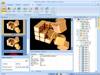 Flash Decompiler Trillix 5.3.1400 Screenshot 3