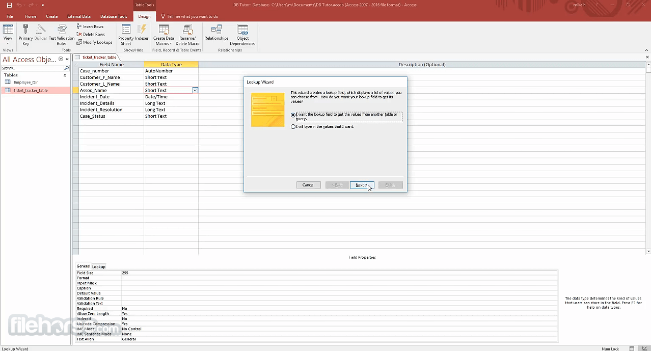 Microsoft Access 2019 Captura de Pantalla 4