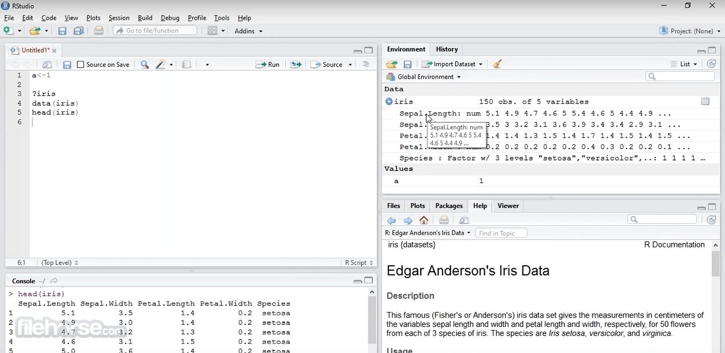 RStudio 1.4.1717 Screenshot 2
