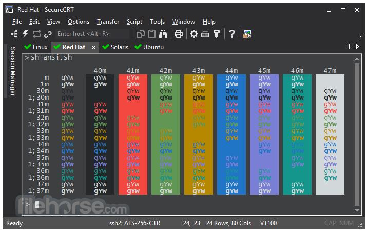 SecureCRT 9.0.2 Screenshot 1