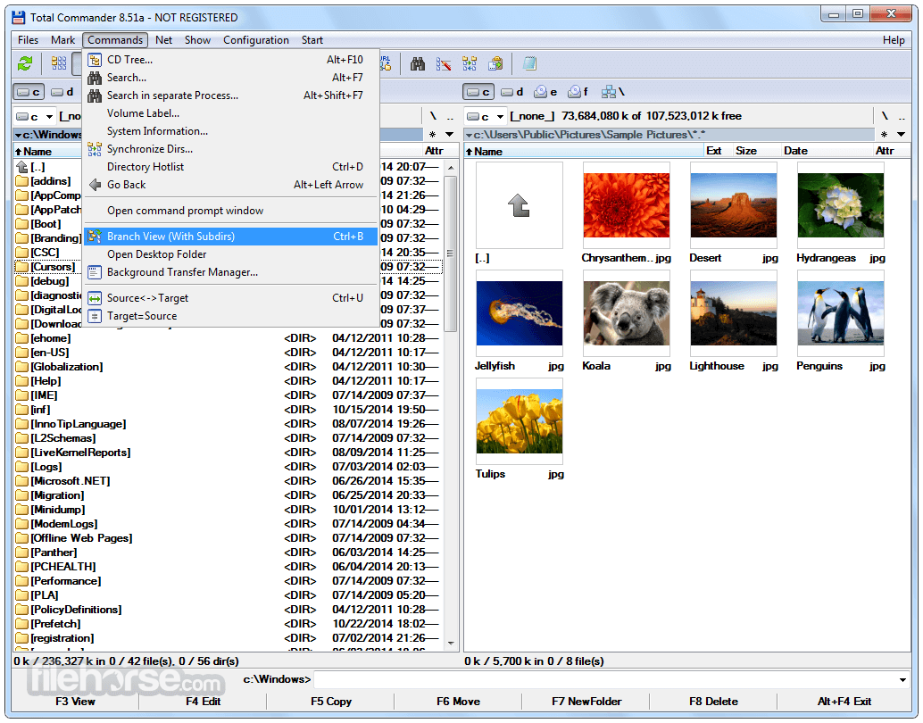 Total Commander 9.51 (32-bit) Screenshot 3