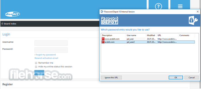 Password Depot 11.0.6 Captura de Pantalla 2