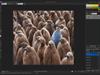 ACDSee Photo Editor 10.0 Build 46 Screenshot 1