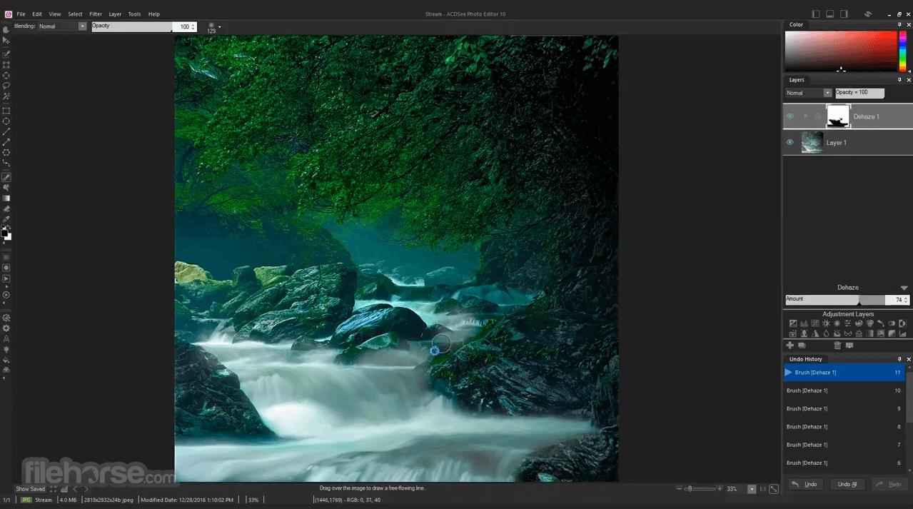 ACDSee Photo Editor 10.0 Build 46 Captura de Pantalla 5