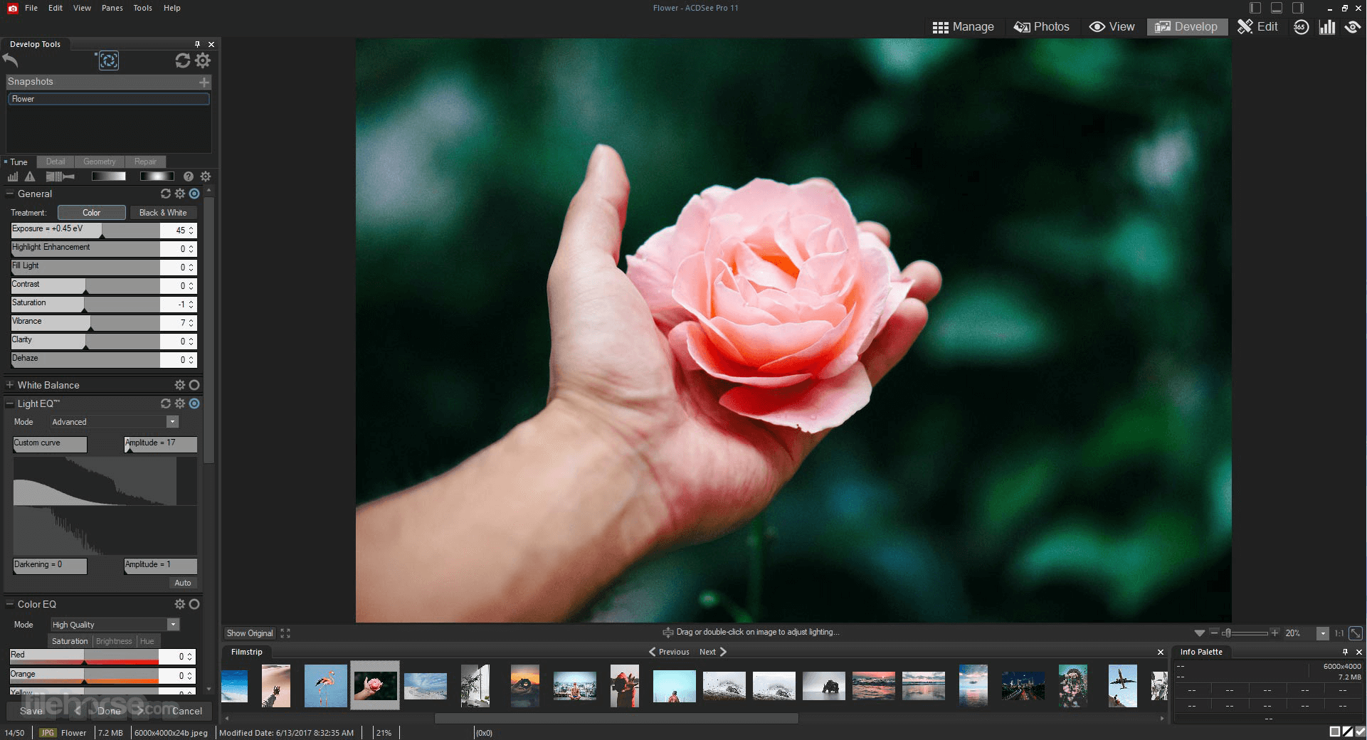 ACDSee Photo Studio Professional 2020 13.0.2 Build 1417 (64-bit) Screenshot 2