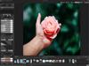 ACDSee Photo Studio Professional 2018 11.0 Build 787 (32-bit) Screenshot 2
