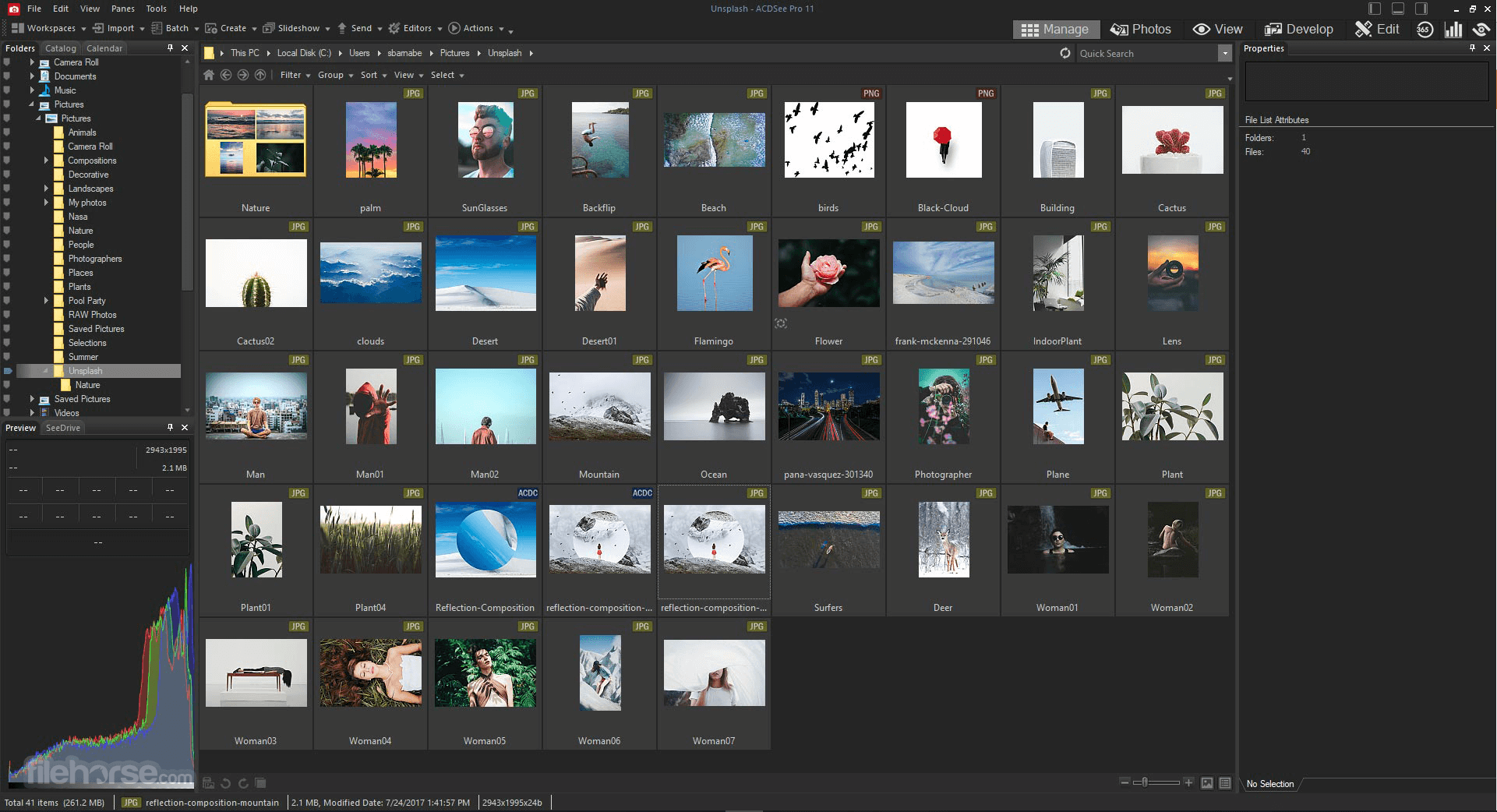 ACDSee Photo Studio Professional 2020 13.0.2 Build 1417 (64-bit) Screenshot 4