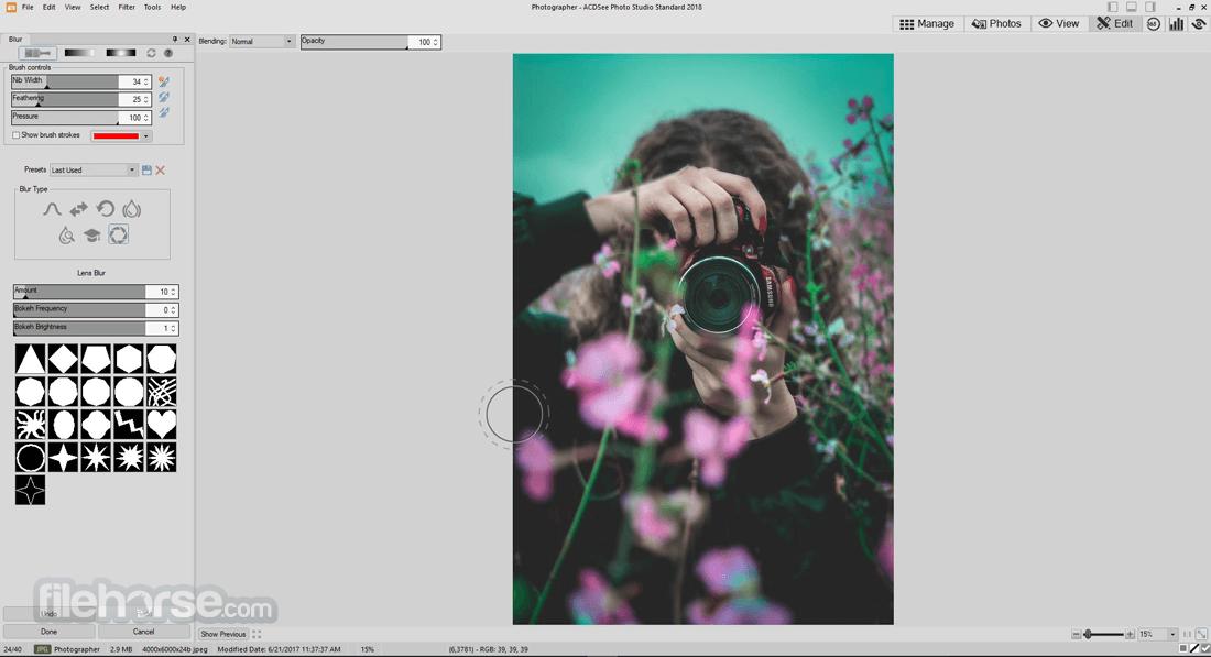 ACDSee Photo Studio Standard 2018 21.0 Build 725 (64-bit) Screenshot 4
