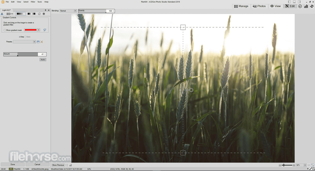 ACDSee Photo Studio Standard 2018 21.0 Build 725 (64-bit) Screenshot 5