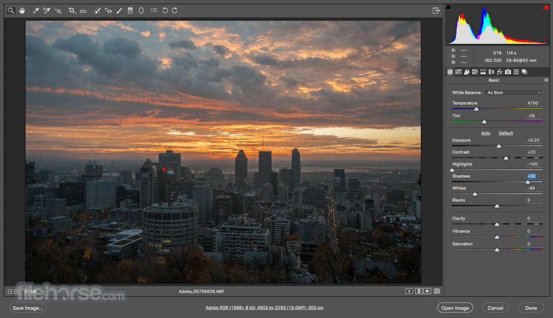 Adobe Camera Raw 10.1 Captura de Pantalla 1