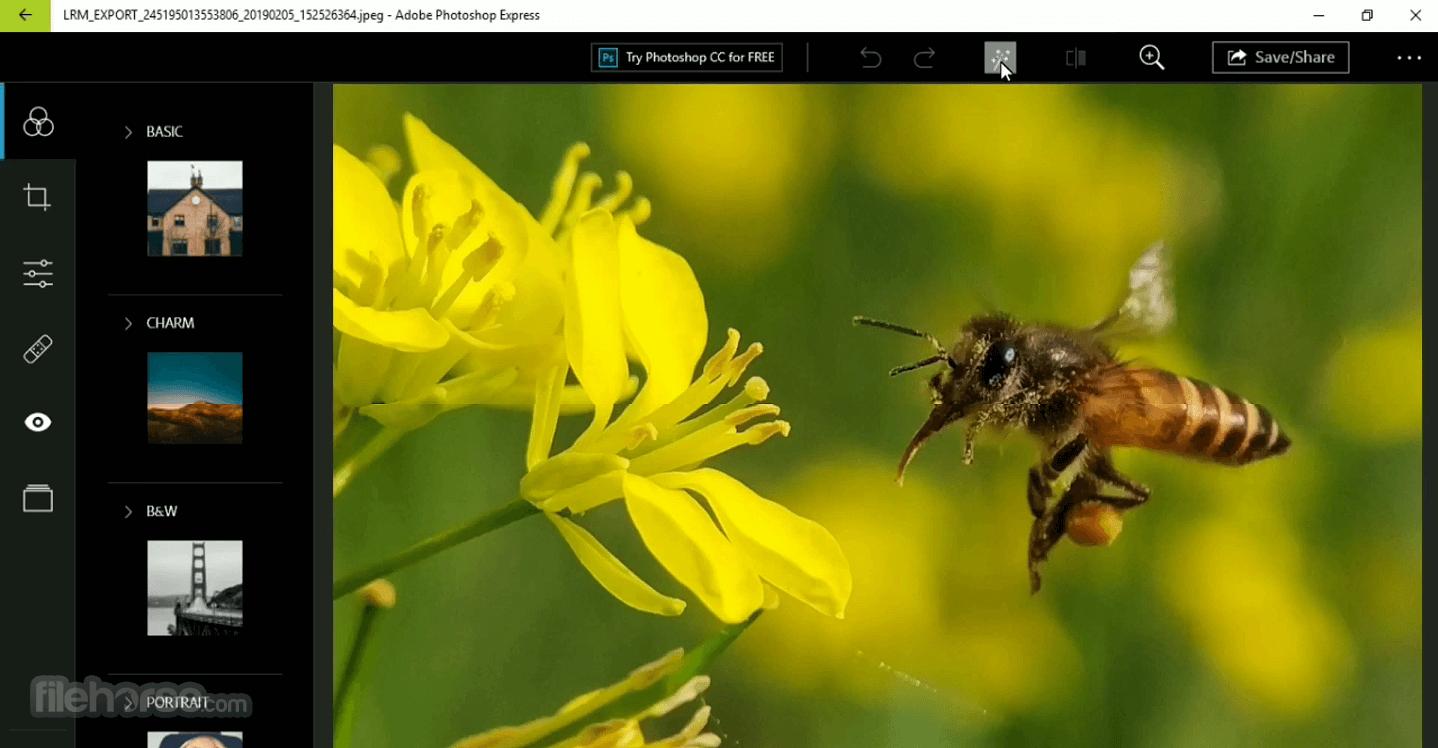 Adobe Photoshop Express 3.4.353 Captura de Pantalla 2