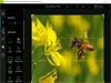 Adobe Photoshop Express 3.0.316 Screenshot 3