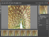 AKVIS Sketch 24.0 (32-bit) Screenshot 3