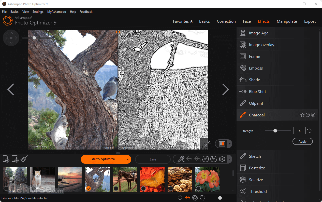 Ashampoo Photo Optimizer 7.0.0 Captura de Pantalla 3