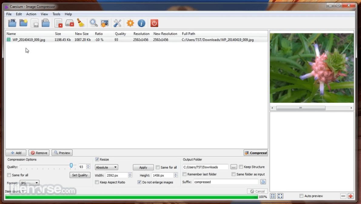 Caesium Image Compressor 1.7.0 Captura de Pantalla 2