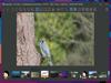 ImageGlass 8.0.12.8 (32-bit) Captura de Pantalla 1