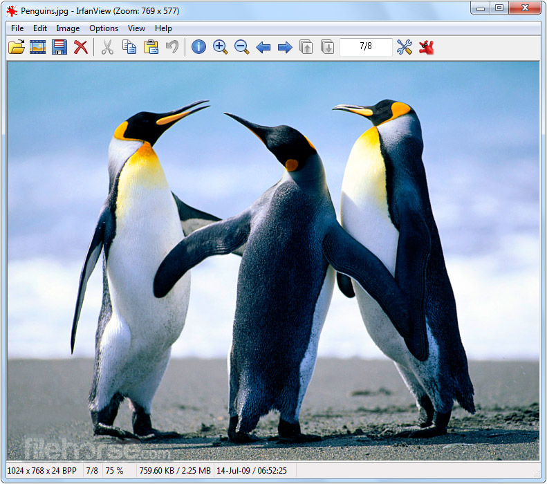 IrfanView 4.51 (64-bit) Screenshot 1