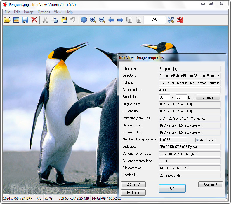 IrfanView 4.51 (64-bit) Screenshot 2