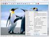 IrfanView 4.50 (32-bit) Captura de Pantalla 2