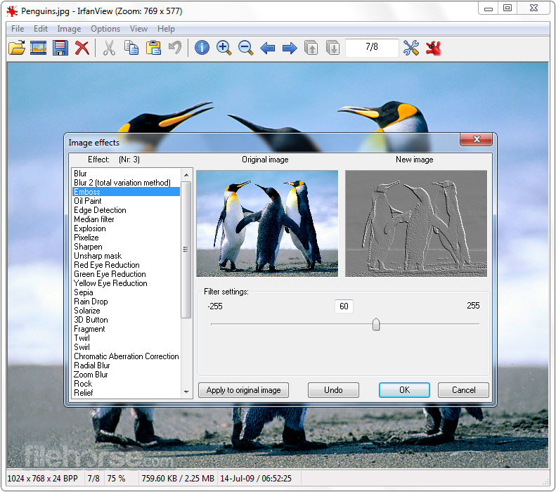 IrfanView 4.51 (64-bit) Screenshot 3