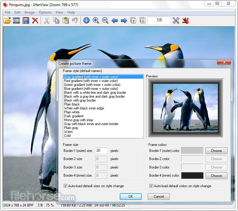 IrfanView 4.51 (64-bit) Screenshot 4
