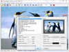 IrfanView 4.50 (32-bit) Captura de Pantalla 4